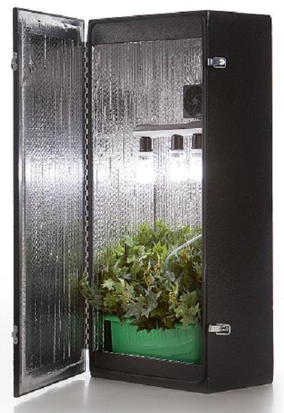 Cash Crop 4 0 Growtents Amp Growboxes Seedspotter